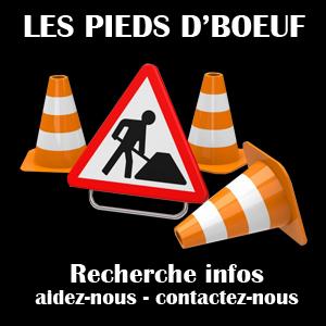 GROUPE_LES_PIEDS_DBOEUF_TRAVAUX