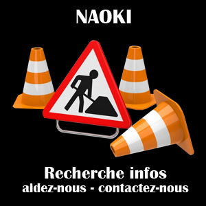 GROUPE_NAOKI_TRAVAUX